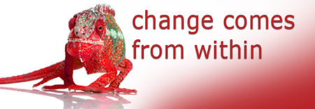 how to manage change,change management,change managers,change management training