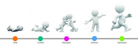 business process maturity model,change management,change managers,change management training