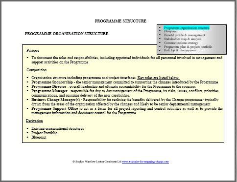 organisation structure, programme,change management,change managers,change management training